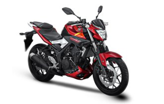 Yamaha-MT-25-Red-Rage
